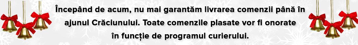 Program Sarbatori