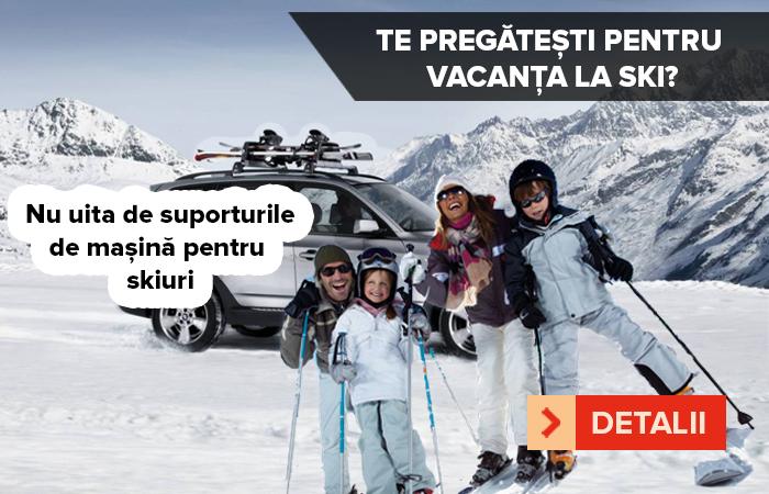 Suport Ski