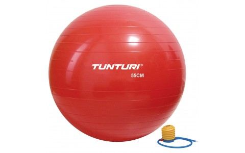 Minge Fitness, Tunturi, 55 cm, Rosu